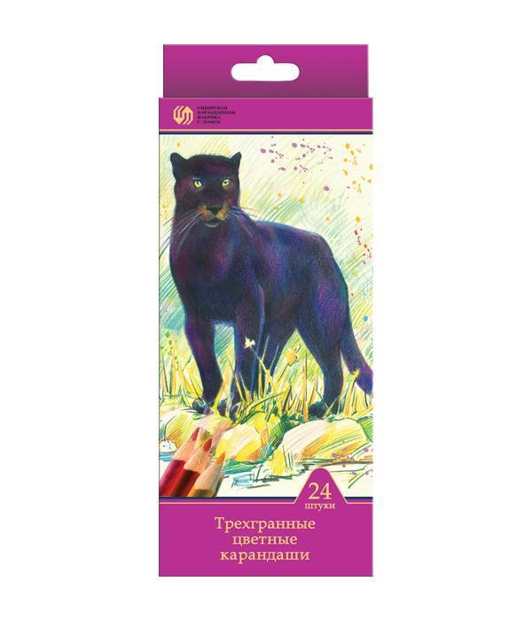 Карандаши 24 цвета Сибирский Кедр. Дикие кошки (длина 175 мм) трехгранные в картонной коробке с европодвесом, ok 6.9 мм карандаши цветные сибирский кедр веселые карандаши 12 цветов в блистере ск039 12
