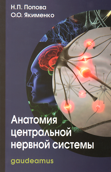 Н. П. Попова, О. О. Якименко Анатомия центральной нервной системы и в гайворонский г и ничипорук анатомия центральной нервной системы краткий курс учебное пособие