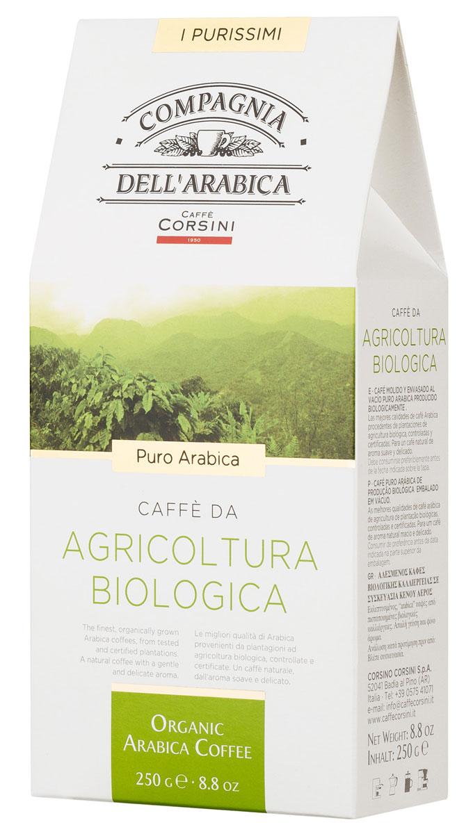 Compagnia Dell'Arabica Caffe Puro Arabica Da Agricultura Biologica молотый кофе, 250 г (вакуумная упаковка) must n puro arabica 10шт
