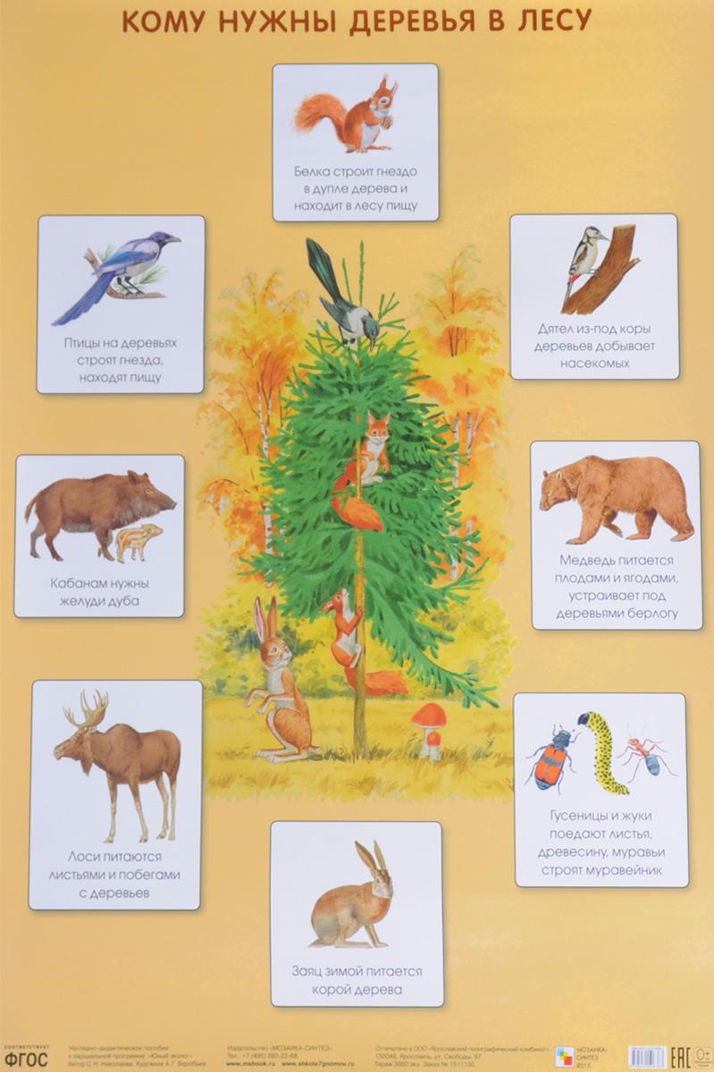 С. Н. Николаева Кому нужны деревья в лесу. Плакат с н николаева как лесник заботится о лесе плакат