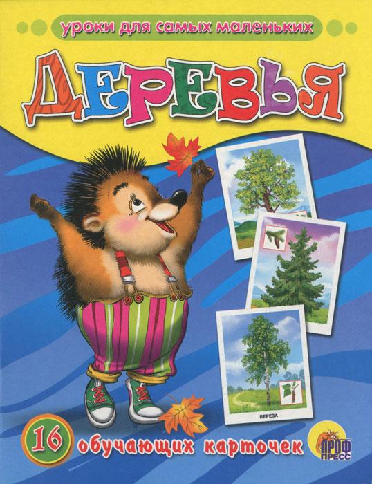 Деревья (набор из 16 обучающих карточек) одежда набор из 16 карточек