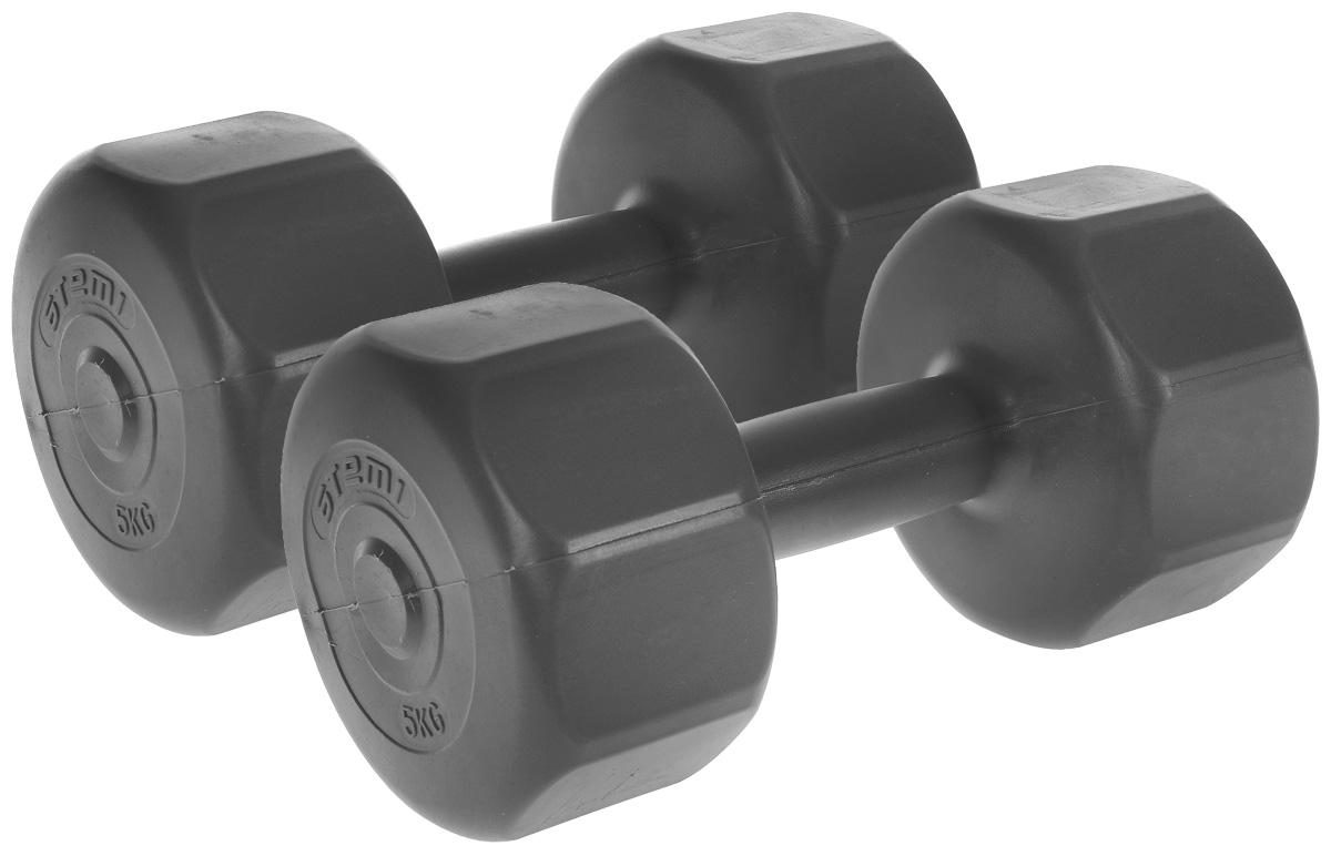 Гантели виниловые Atemi, цвет: серый, 5 кг, 2 шт гантели разборные starfit bb 501 в чемодане цвет серый металлик 10 кг 2 шт