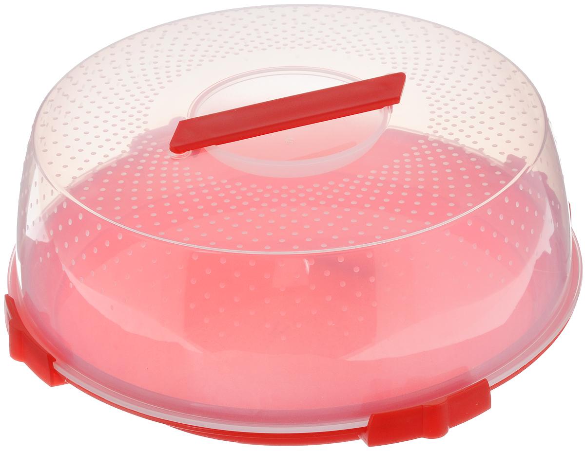 Тортница Cosmoplast Оазис, цвет: красный, прозрачный, диаметр 32 см тортница cosmoplast оазис цвет красный прозрачный диаметр 28 см