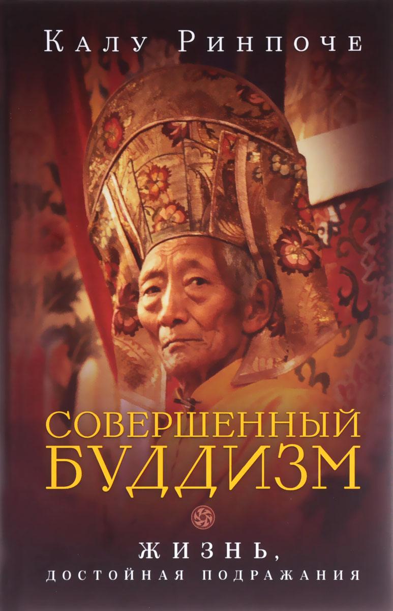 Калу Ринпоче Совершенный буддизм. Жизнь, достойная подражания ринпоче калу тайный буддизм том iii глубина алмазной колесницы