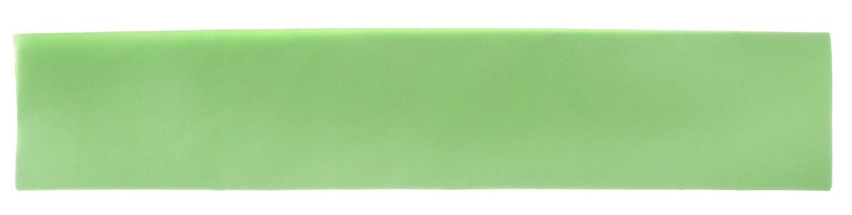Бумага крепированная Феникс+, цвет: светло-зеленый, 50 х 250 см39522Крепированная бумага Феникс+ - отличный вариант для воплощения творческих идей не только детей, но и взрослых. Она отлично подойдет для упаковки хрупких изделий, при оформлении букетов, создании сложных цветовых композиций, для декорирования и других оформительских работ. Бумага обладает повышенной прочностью и жесткостью, хорошо растягивается, имеет жатую поверхность. Кроме того, крепированная бумага Феникс+ поможет увлечь ребенка, развивая интерес к художественному творчеству, эстетический вкус и восприятие, увеличивая желание делать подарки своими руками, воспитывая самостоятельность и аккуратность в работе. Такая бумага поможет вашему ребенку раскрыть свои таланты. Размер: 50 см х 250 см. Плотность: 22 г/м2.