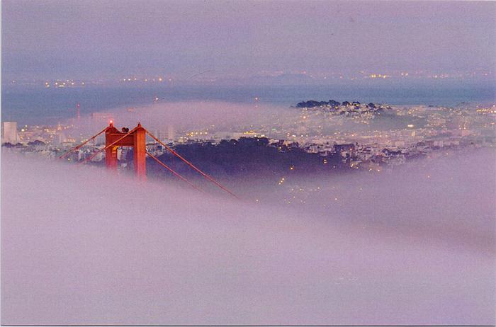The Foggy Golden Gate. Открытка