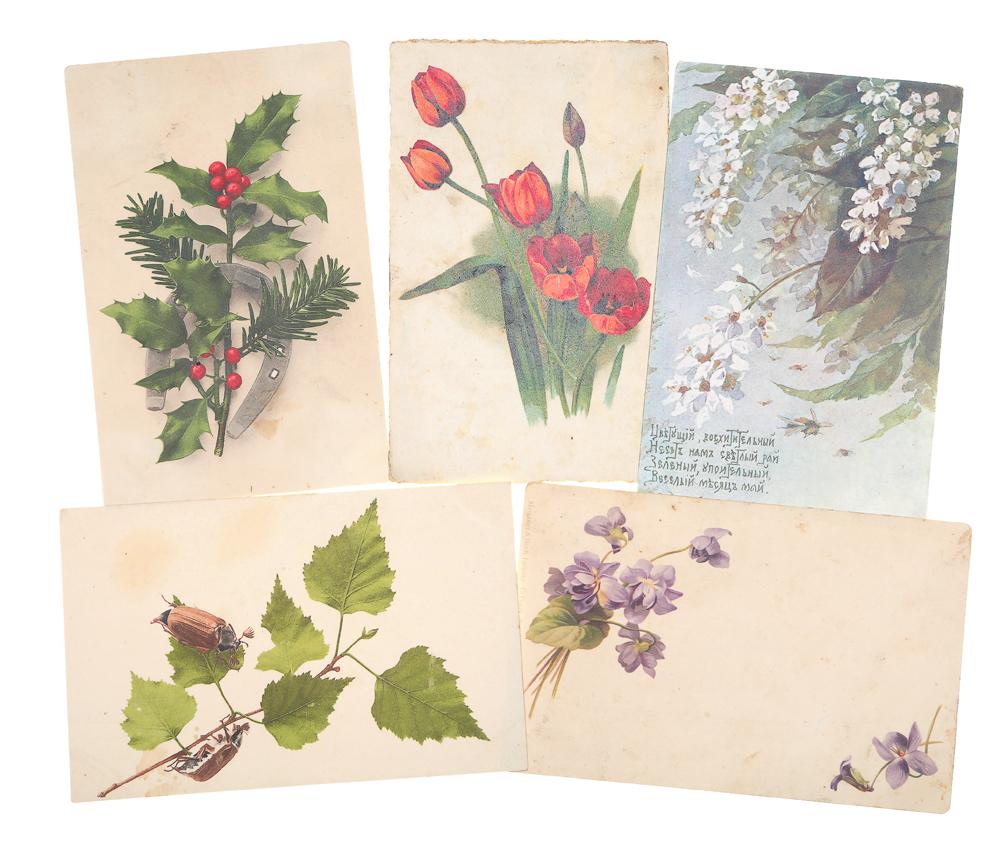 Пять открыток, спасибо дорогая