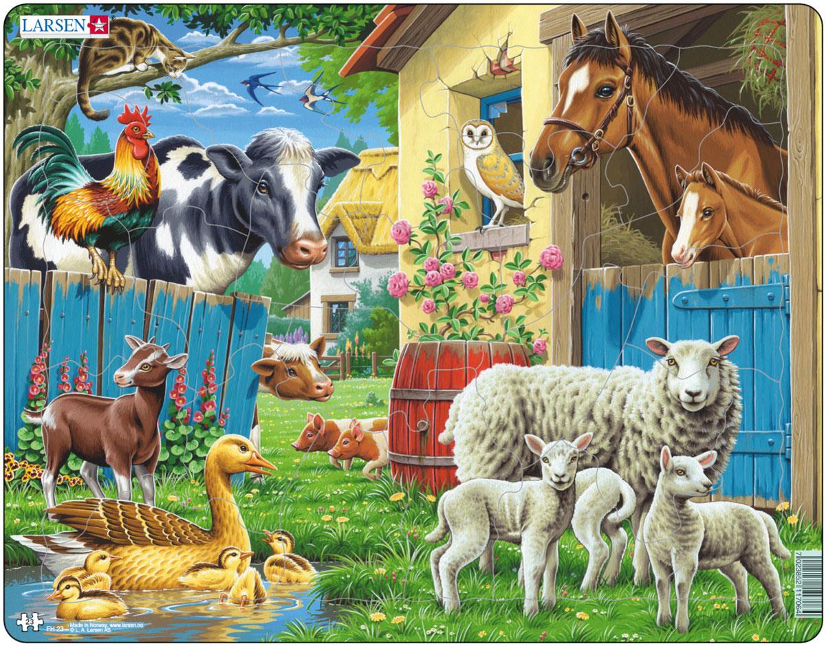 В мире домашних животных картинки