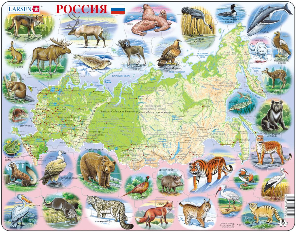 карта россии с картинками животных такое целлюлит косметический