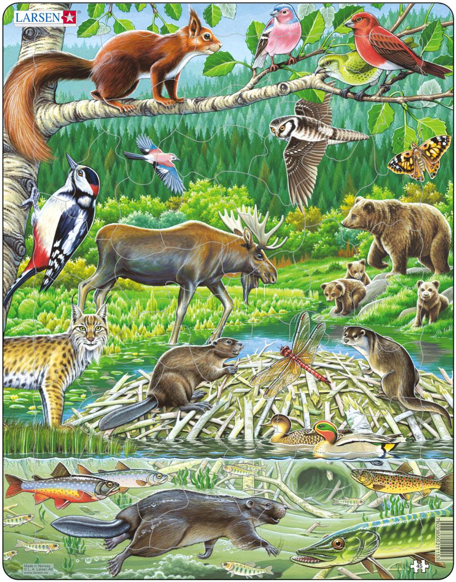 Постер россии с животными