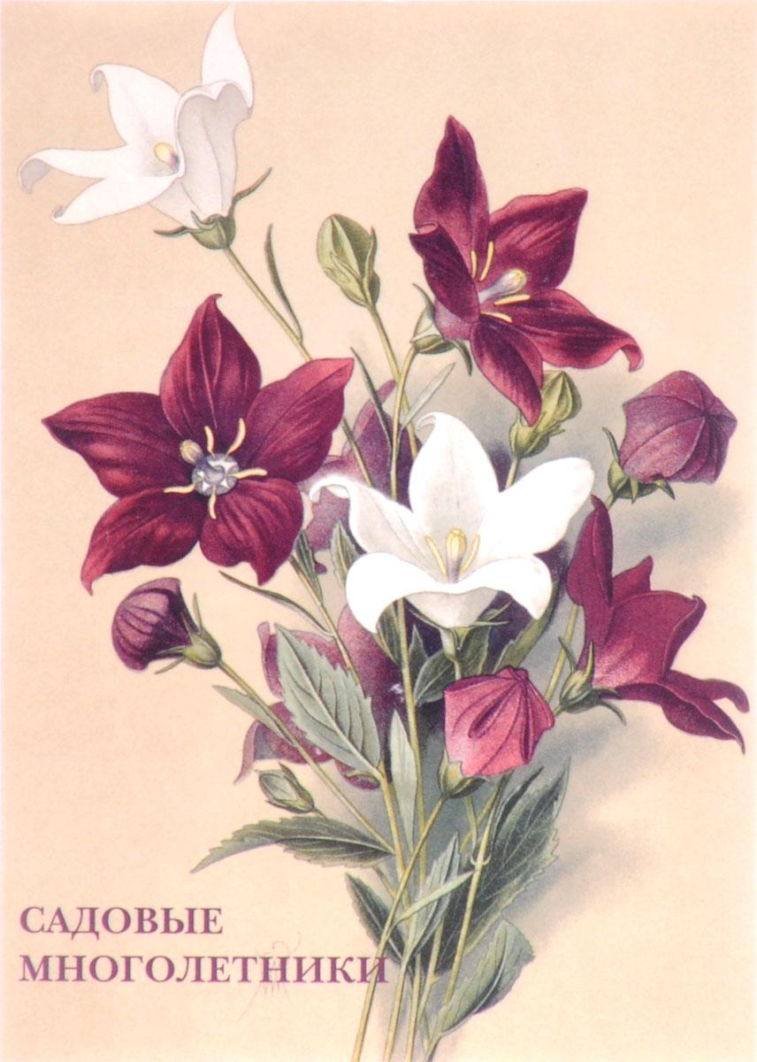 Садовые многолетники (набор из 15 открыток) гесдёрфер макс садовые многолетники наиболее красивые и пригодные для садовой культуры