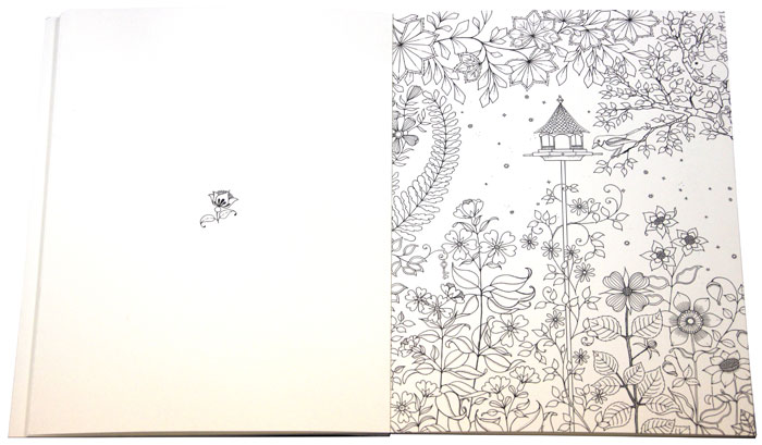 Таинственный сад. Издание для художников. 20 арт-постеров для оформления в багет. Джоанна Бэсфорд