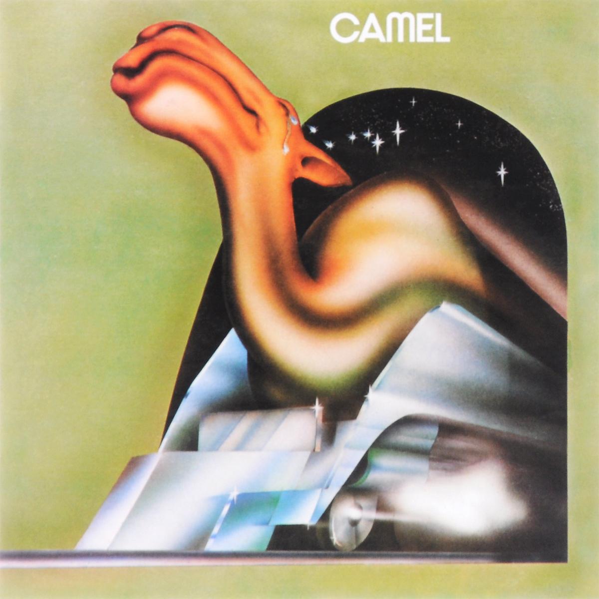 Camel Camel. Camel camel southampton