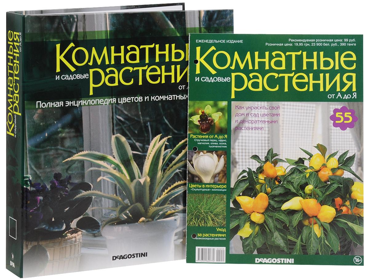 Каталог открытки комнатные растения, открытку днем рождения