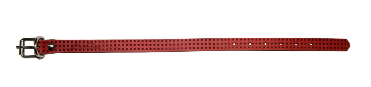 Ошейник для собакАркон, 14 мм, с тиснением F1, цвет: красный. о14фкр обогреватель инфракрасный timberk tch a3 1000