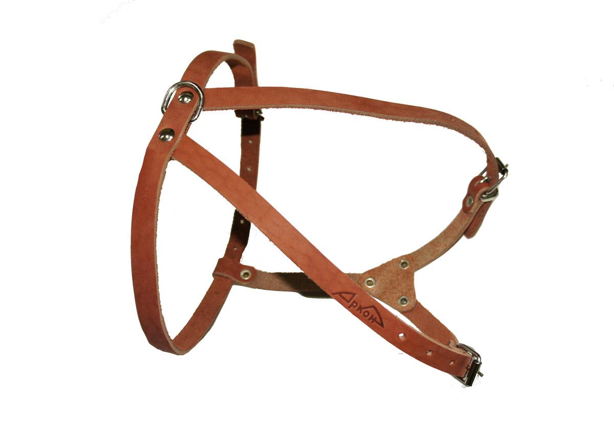 Шлейка Аркон М, цвет: коньячный, ширина 12 мм, длина: 35 - 57 см. шмкшмкШлейка Аркон М - это альтернатива ошейнику. Правильно подобранная шлейка не стесняет движения собаки, не натирает кожу, поэтому животное чувствует себя в ней уверенно и комфортно. Длина: 35 - 57 см Ширина: 12 мм.