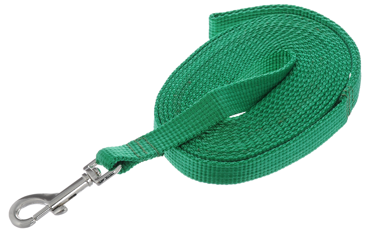 Поводок капроновый для собак Аркон, цвет: зеленый, ширина 2 см, длина 5 м поводок капроновый для собак аркон цвет розовый ширина 2 см длина 5 м