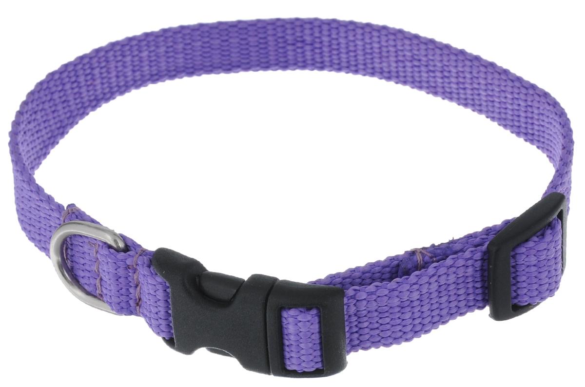 """Ошейник Аркон """"Капрон"""", цвет: фиолетовый, ширина 1,5 см, длина 24-38 см"""