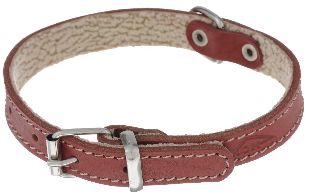 """Ошейник Аркон """"Стандарт"""", цвет: красный, ширина 1,6 см, длина 36 см. о16п"""