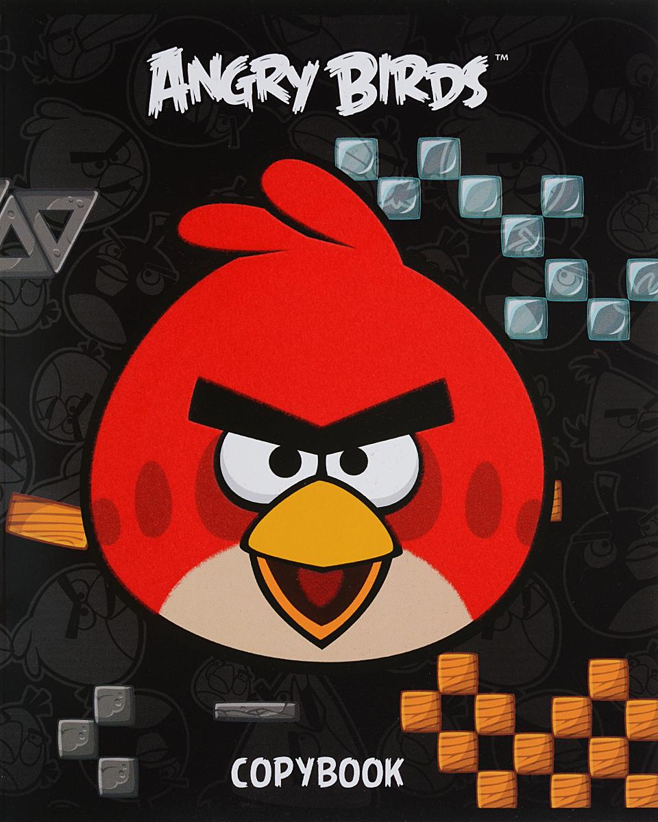 Hatber Тетрадь Angry Birds 48 листов в клетку цвет черный hatber тетрадь angry birds 48 листов в клетку цвет голубой розовый