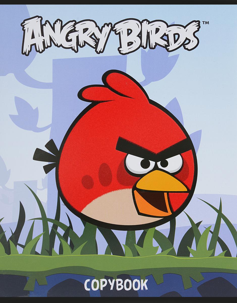 Hatber Тетрадь Angry Birds 48 листов в клетку цвет голубой hatber тетрадь russia 48 листов в клетку