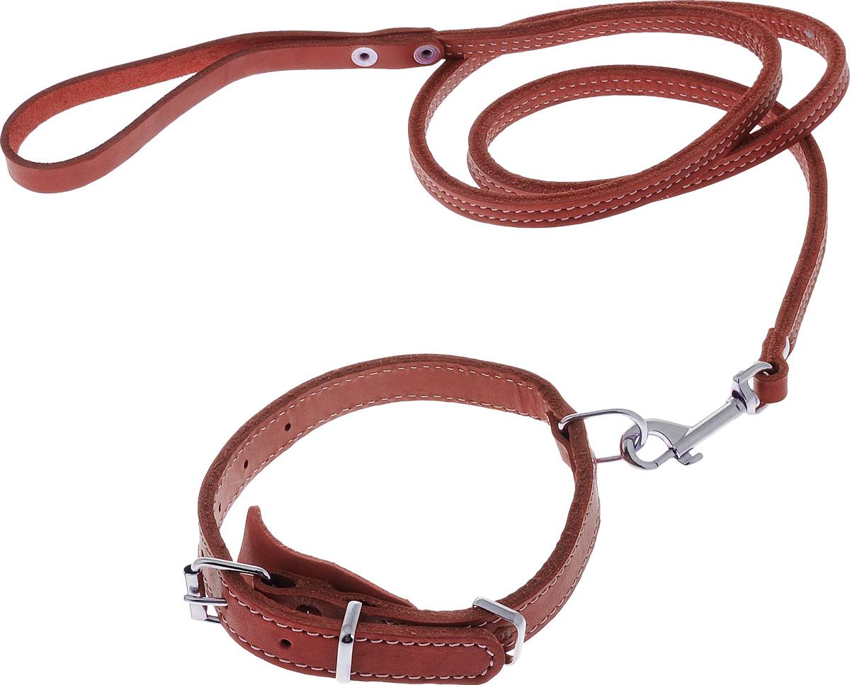 """Комплект для собак Аркон """"Стандарт №6"""", цвет: красный, 2 предмета"""