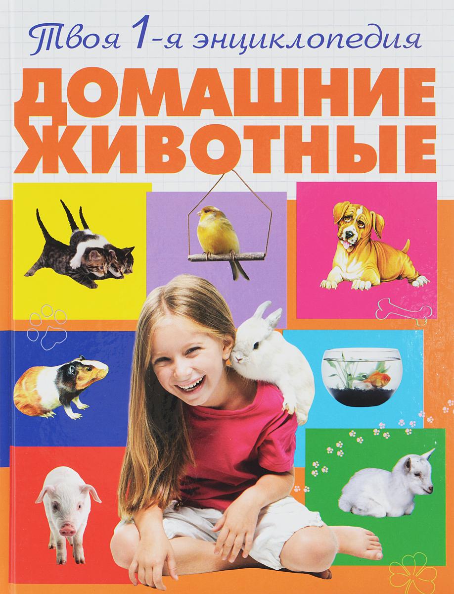 Смирнова А.А. Домашние животные