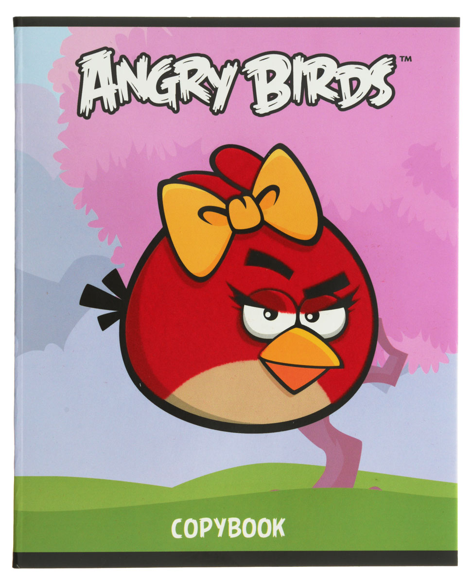 Hatber Тетрадь Angry Birds 48 листов в клетку цвет голубой розовый