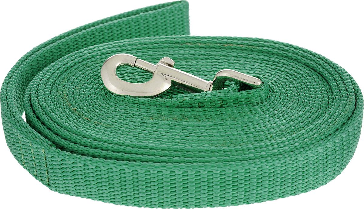 Поводок капроновый для собак Аркон, цвет: зеленый, ширина 2,5 см, длина 5 м поводок капроновый для собак аркон цвет розовый ширина 2 см длина 5 м