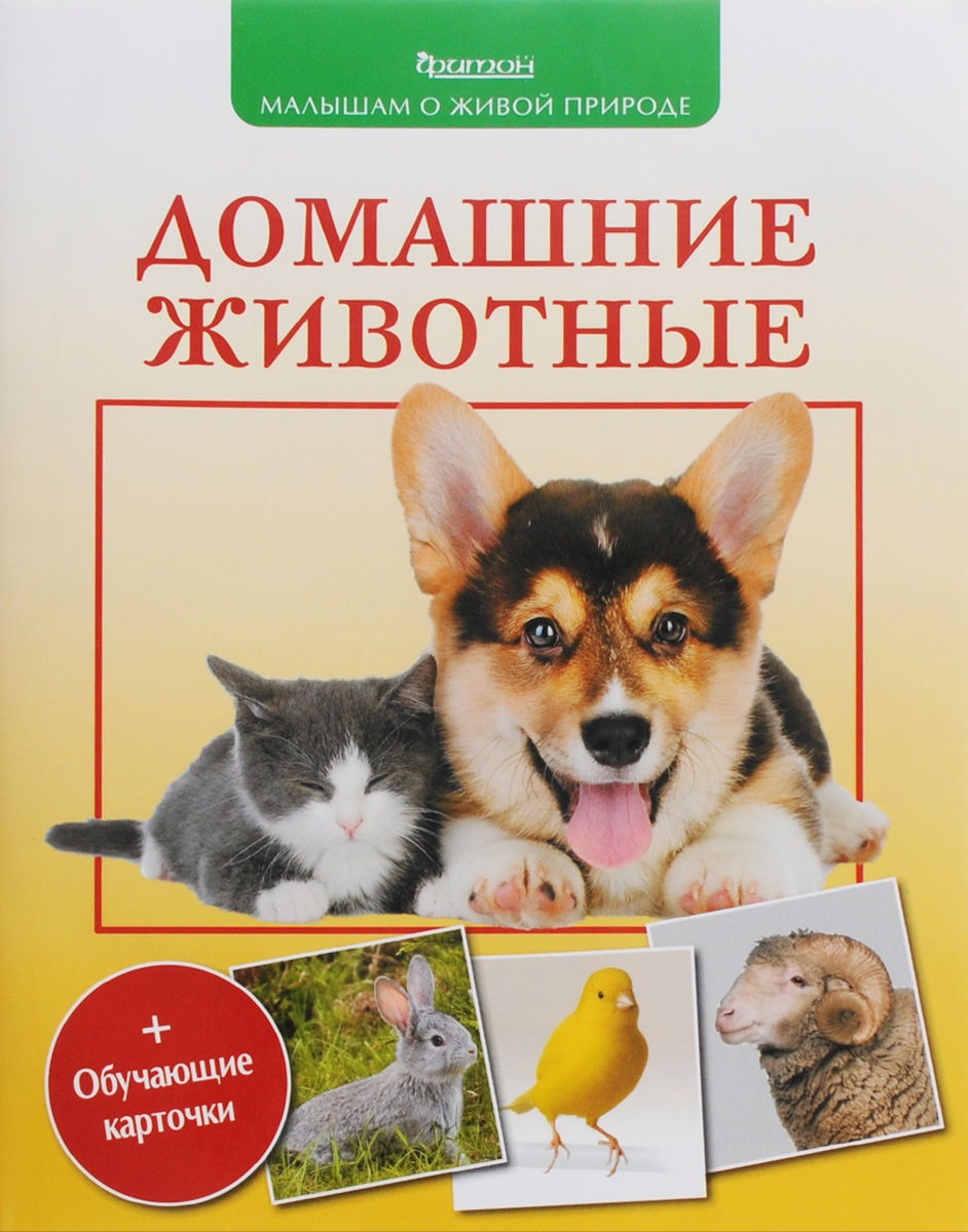 П. М. Волцит Домашние животные (+ обучающие карточки) волцит п м собираем урожай малышам о живой природе