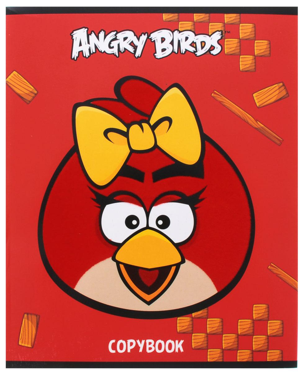 Hatber Тетрадь Angry Birds 48 листов в клетку цвет красный желтый hatber тетрадь angry birds 48 листов в клетку цвет голубой розовый