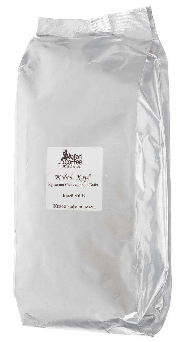 Живой Кофе Бразилия Сальвадор де Байя кофе в зернах, 1 кг (промышленная упаковка) живой кофе бразилия сальвадор де байя кофе в зернах 1 кг промышленная упаковка