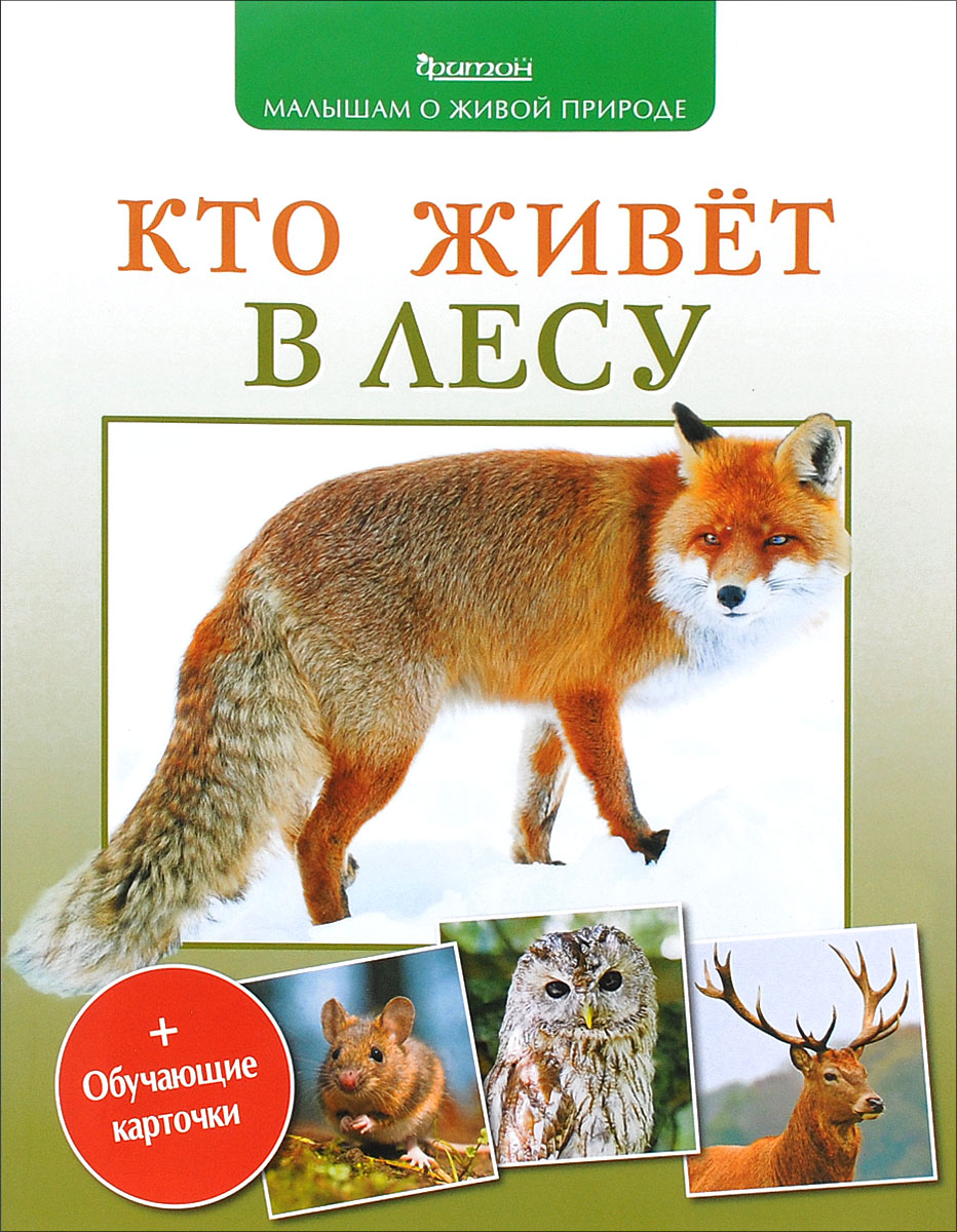 П. М. Волцит Кто живет в лесу волцит п м собираем урожай малышам о живой природе