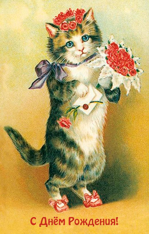 Юбилею, открытки с днем рождения женщине прикольные котики