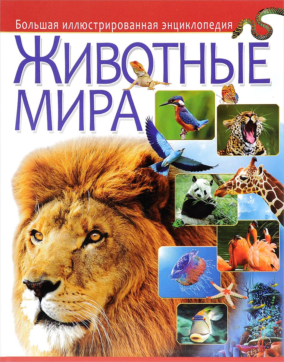 Животные мира. Большая иллюстрированная энциклопедия культуры мира иллюстрированная энциклопедия для детей