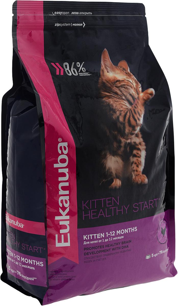 Корм сухой для котят Eukanuba Kitten Healthy Start, с домашней птицей, 5 кг