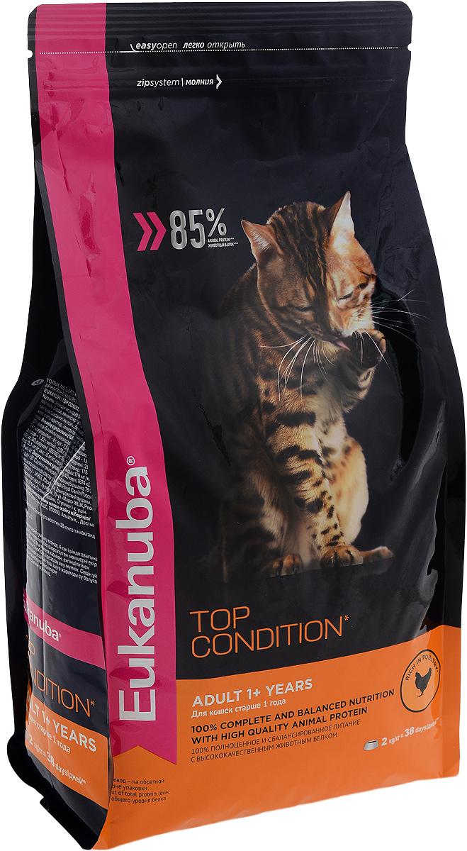 Корм сухой Eukanuba Top Condition для взрослых кошек, с домашней птицей, 2 кг демирчоглян г г компьютер и здоровье
