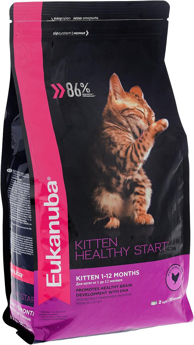 Корм сухой для котят Eukanuba Kitten Healthy Start, с домашней птицей, 2 кг