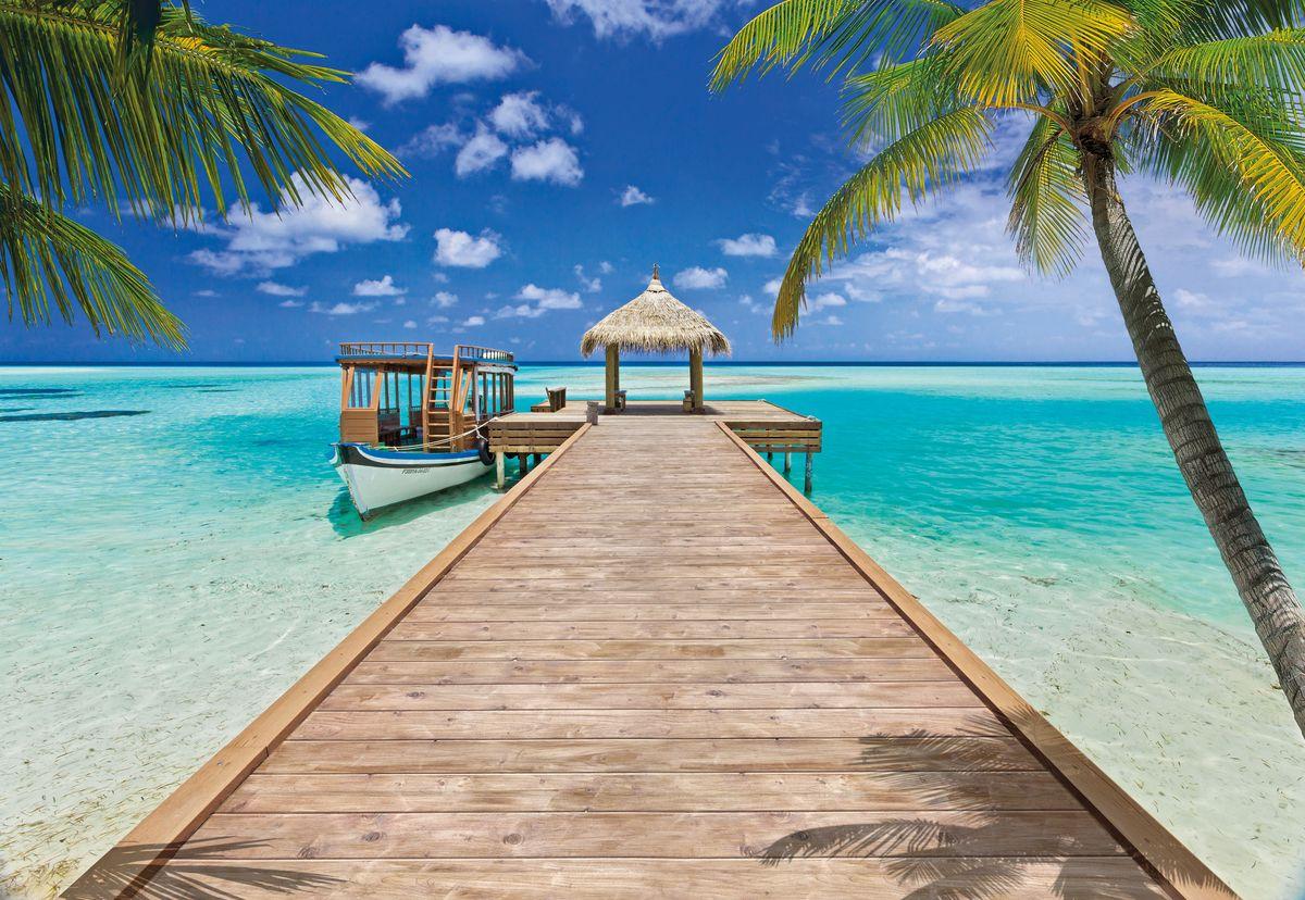 Приколы, картинка с океаном и пальмой