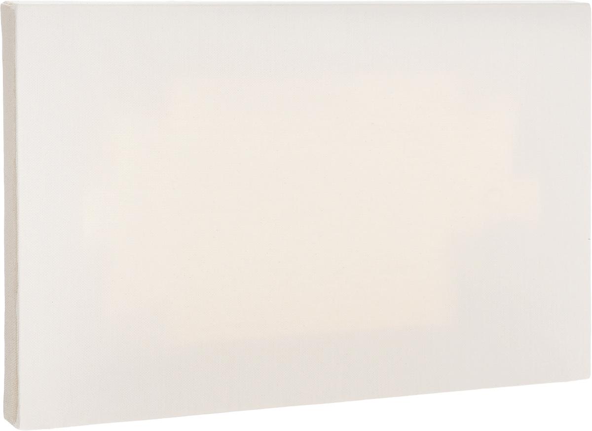 """Холст ArtQuaDrum """"Этюдный"""" 25 х 45 см, на подрамнике, грунтованный"""