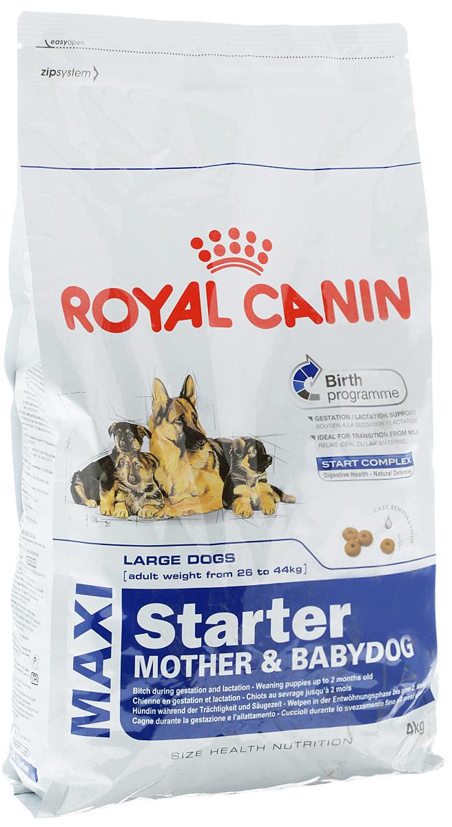 Корм сухой Royal Canin Maxi Starter. Mother & Babydog, для беременных собак весом от 26 кг до 44 кг и щенков, 4 кг сухой корм royal canin maxi starter mother