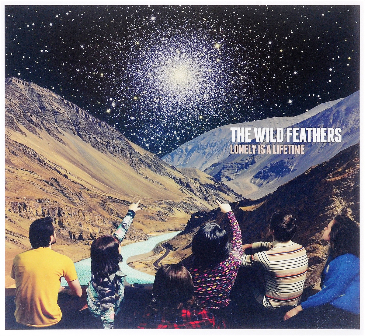 The Wild Feathers The Wild Feathers. Lonely Is A Lifetime (LP) wild feathers wild feathers lonely is a lifetime