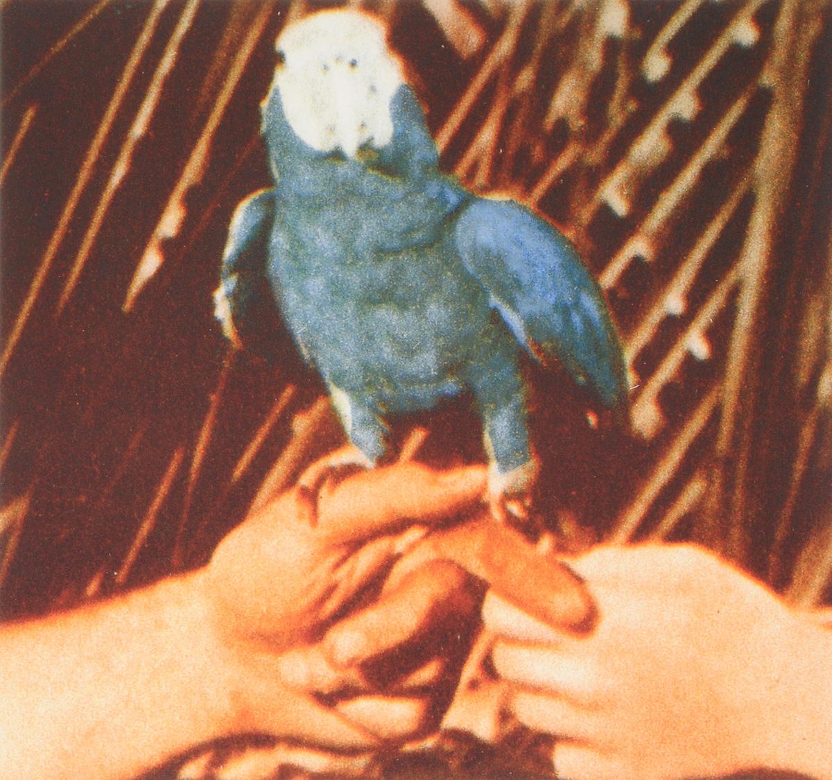 Эндрю Берд Andrew Bird. Are You Serious (LP) andrew bird andrew bird are you serious