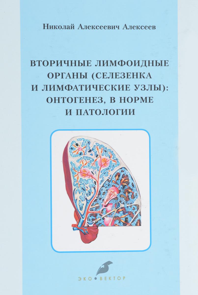 Вторичные лимфоидные органы (селезенка и лимфатические узлы ). Онтогенез, в норме и патологии