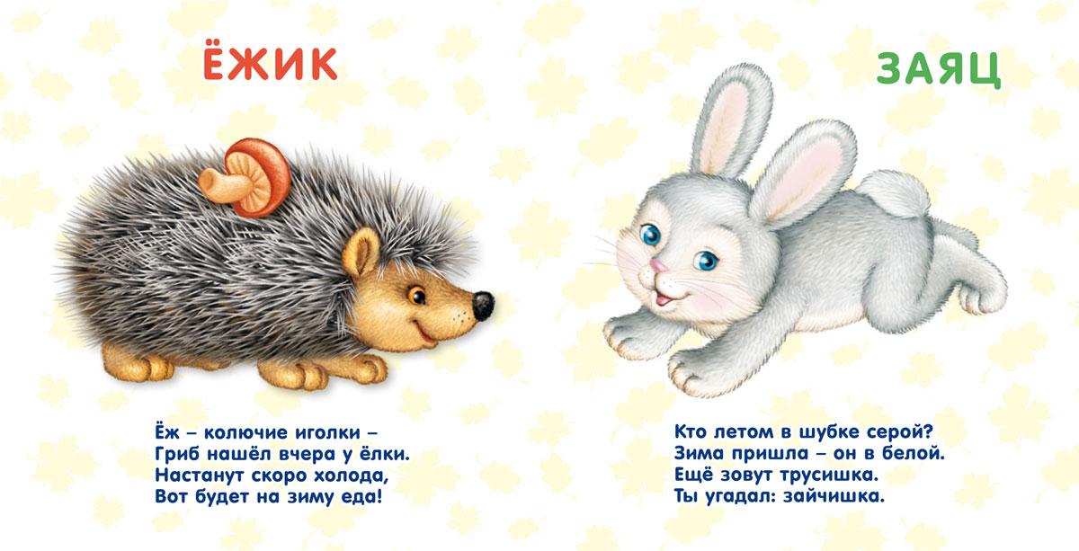 стихи от лица животных оба оказались стесняшками