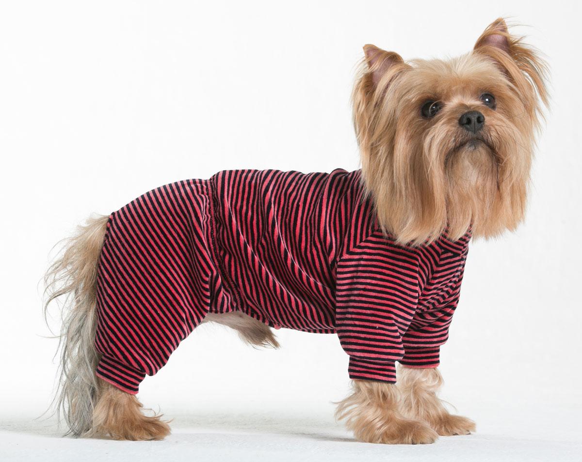 """Комбинезон для собак Yoriki """"Тигровый"""", унисекс, цвет: красный, черный. Размер S"""