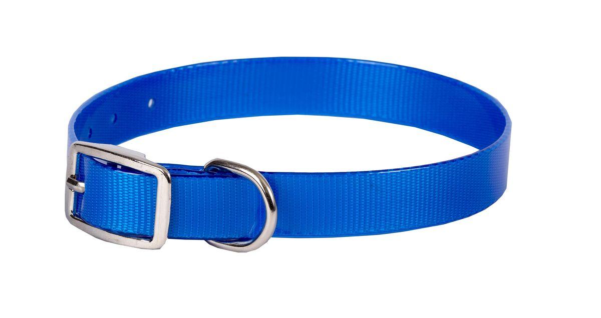 Ошейник для собак Каскад Синтетик, цвет: синий, ширина 1,5 см, обхват шеи 26-35 см ошейник для собак каскад с косынкой цвет красный ширина 10 мм обхват шеи 22 35 см