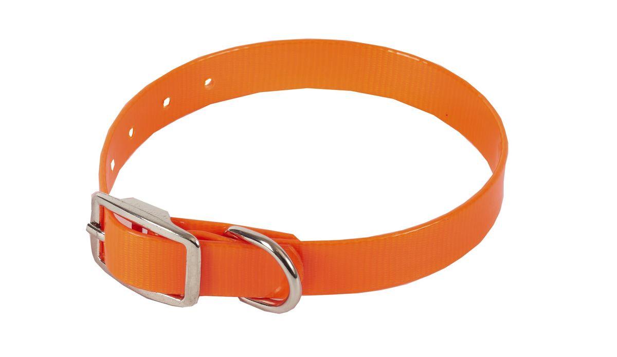 Ошейник для собак Каскад Синтетик, цвет: оранжевый, ширина 2 см, обхват шеи 25-35 см ошейник для собак каскад классика брезентовый ширина 2 см обхват шеи 31 39 см