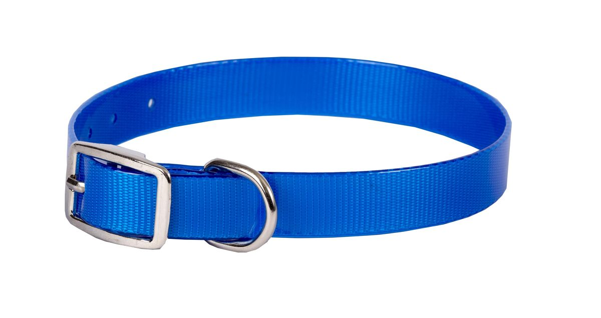 Ошейник для собак Каскад Синтетик, цвет: синий, ширина 2 см, обхват шеи 25-35 см ошейник для собак каскад с косынкой цвет красный ширина 10 мм обхват шеи 22 35 см