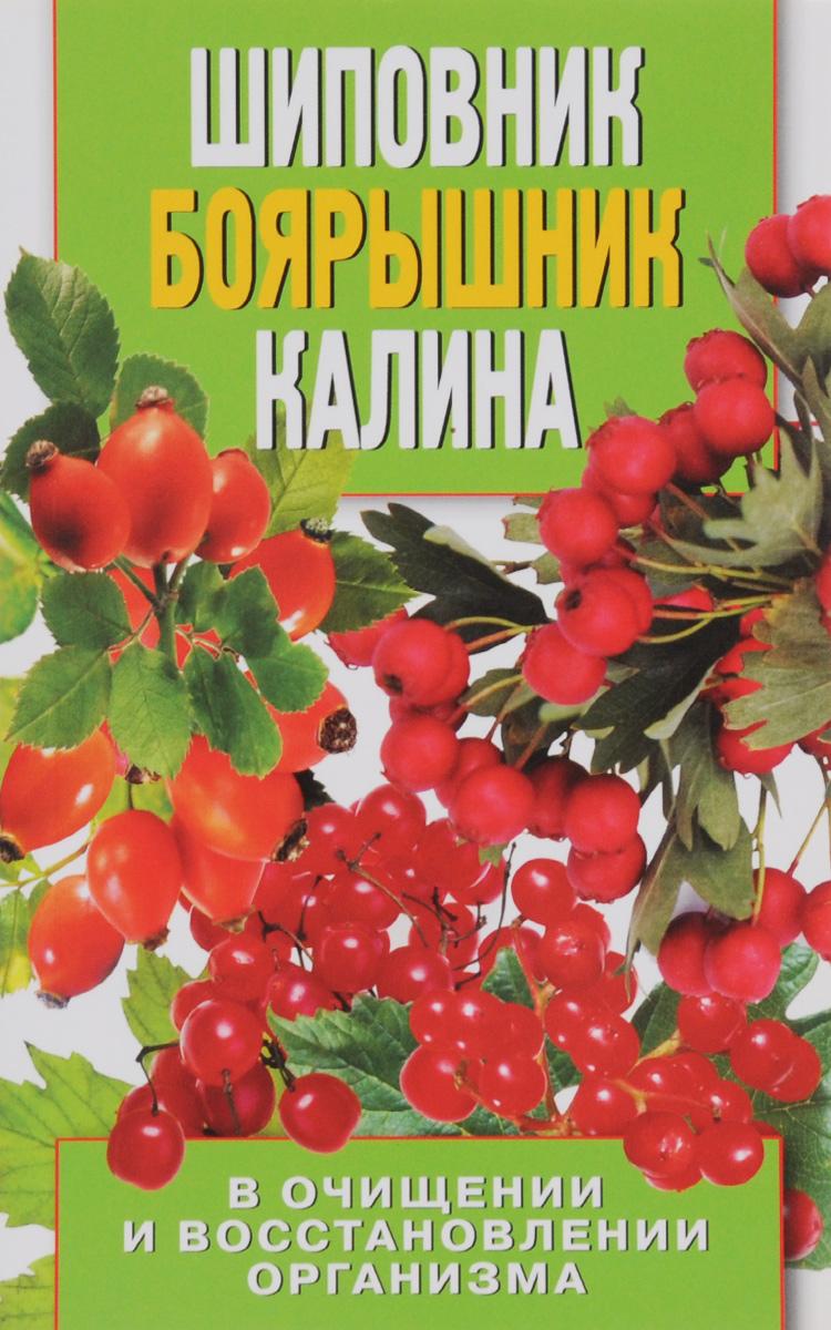 А. В. Нестерова Шиповник, боярышник, калина в очищении и восстановлении организма